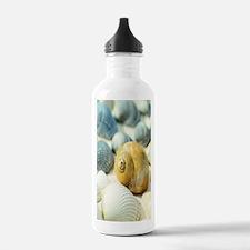 Sea Shells Water Bottle