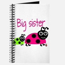 Ladybug Big Sister Journal