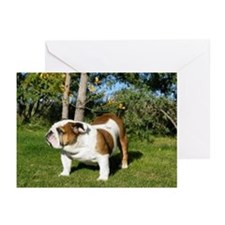 Honor Bulldog Greeting Cards (Pk of 10)