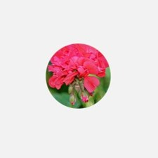 Geranium flower (red) in bloom in gard Mini Button