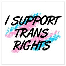 I Support Trans Rights Canvas Art