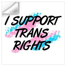 I Support Trans Rights Wall Decal