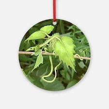 forest leaf dragon Ornament (Round)