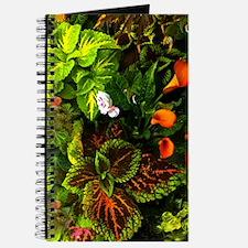 Callas In Orange Journal