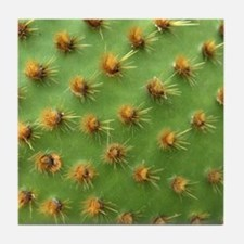 Green cactus Tile Coaster