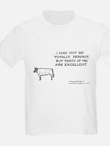 433 T-Shirt