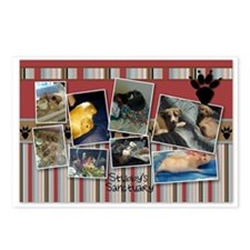 Stubby's Sanctuary Postcards (Package of 8)