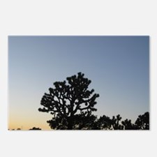 Joshua Tree at Sunset Postcards (Package of 8)