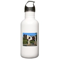 horse gypsy vanner Water Bottle