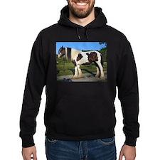 horse gypsy vanner Hoodie