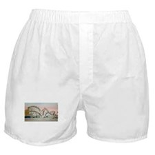 Cute Amusement parks Boxer Shorts