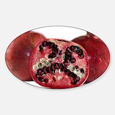 Pomegranate Sticker (Oval)