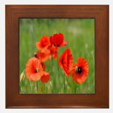 Poppy Fields Framed Tile