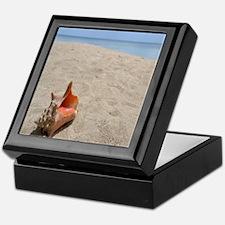 Funny Shell Keepsake Box
