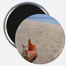 Unique Beach themed Magnet