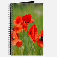 Poppy Fields Journal