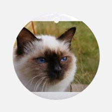 birman Ornament (Round)