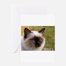 birman Greeting Cards
