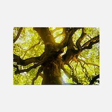 Under the Oak Tree Magnets