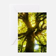 Under the Oak Tree Greeting Cards