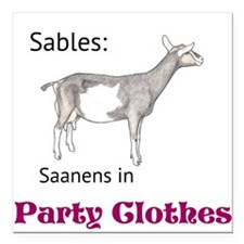 "Party Clothes Sables Square Car Magnet 3"" x 3"""