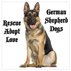 Love GSDs Poster