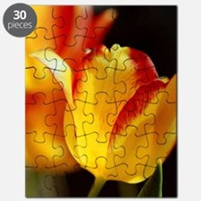 Red Yellow Tulips 10 Puzzle