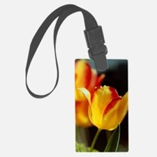 Red Yellow Tulips 667 Luggage Tag