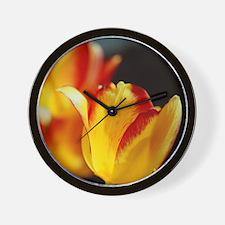 Red Yellow Tulips 792 Wall Clock