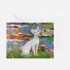 Lilies (#2) & Devonshire Rex Greeting Card