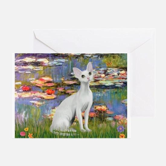 Lilies (#2) & Devonshire Rex Greeting Card