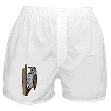 Flicker Boxer Shorts