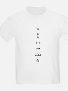 Curious Alchemy Symbols T-Shirt