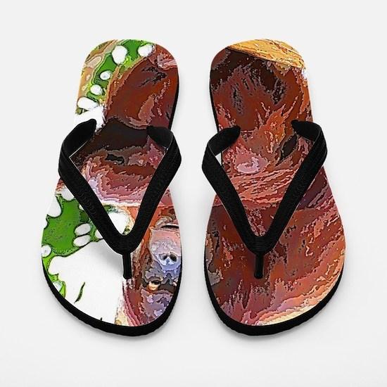 Painted Orang Flip Flops