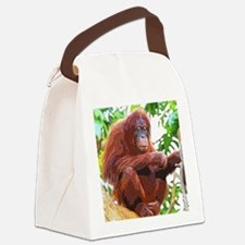 Painted Orang Canvas Lunch Bag