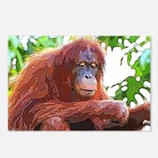 Painted Orang Postcards (Package of 8)
