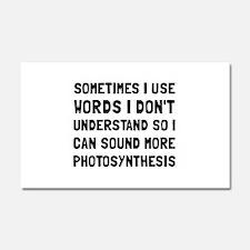 Photosynthesis Car Magnet 20 x 12