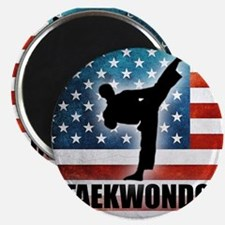 Taekwondo fighter USA American Flag Magnet