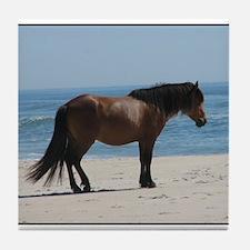 Wild Pony on Beach Tile Coaster