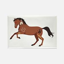 Native American War Horse Magnets