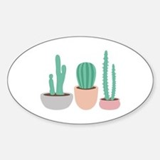 Potted Cactus Desert Plants Decal