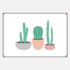 Potted Cactus Desert Plants Banner