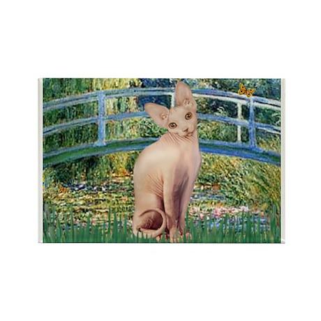 Lily Pond Bridge & Sphynx cat Rectangle Magnet