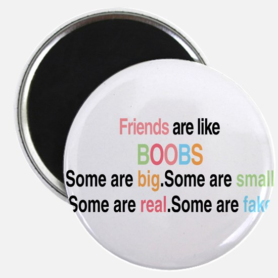 Friends are like boobs Magnets