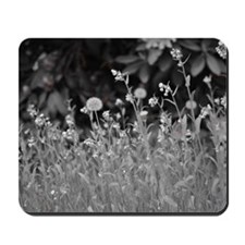 Field of wishes. Mousepad