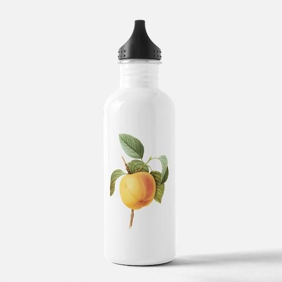 Vintage Apple by Redou Water Bottle