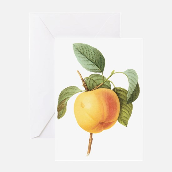 Vintage Apple by Redoute Greeting Card