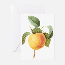 Vintage Apple by Redoute Greeting Cards