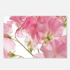 sweet pea Postcards (Package of 8)