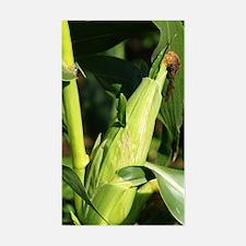 Unique Gmo corn Decal
